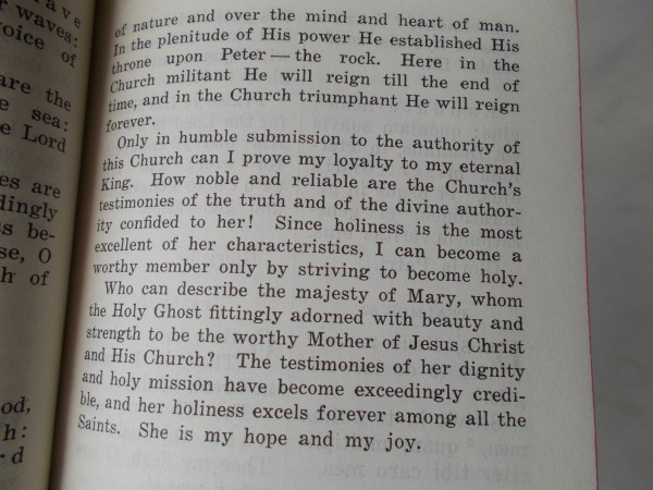The teaching of Vatican II was in continuity with what the Church already taught. There, 1941 Office Book for Dominican Sisters published by the Dominican Sisters of Racine, WI, speaks of the holiness of the Church.